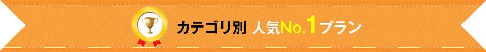 カテゴリ別 人気No.1プラン